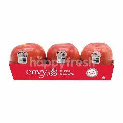 บิต & บีลีฟ แอปเปิ้ล เอนวี่ (แพ็ค 3 ลูก)