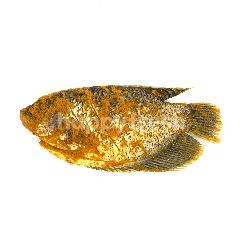 Yellow Seasoned Fish