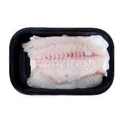 Fillet Ikan Kerapu