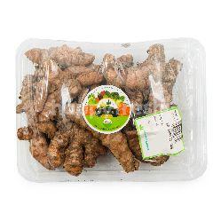 Cianjur Hill Organic Turmeric