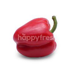 Lushious Red Capsicum 2pcs