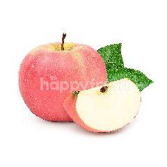 Fuyun Fuji Apple