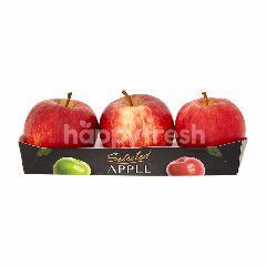 เทสโก้ แอปเปิ้ลกาล่า (L) แพ็ค