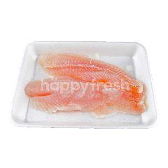 Salmon & Fillets