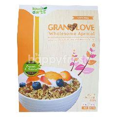Love Earth Wholesome Apricot Granola