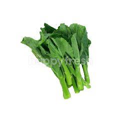 Daily Fresh Vegetables Kai Lan