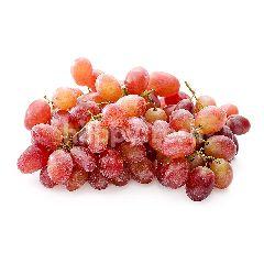 Australian Crimson Seedless Grape