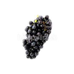 US Scarlet Royal Seedless Grape