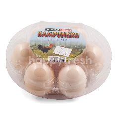 Kampungku Telur Ayam Kampung