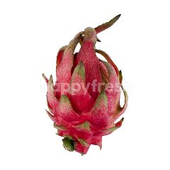 Red Dragon Fruit Local