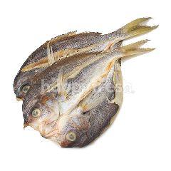 Salted Fish (Ikan Masin Kapak)