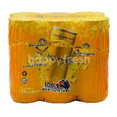 HoneyB Sparkling Honey Drink