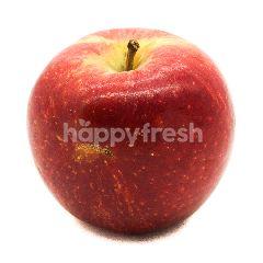 US Braebun Apples
