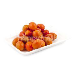 Ranch Organic 99 Tomat Cherry Organik