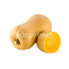 Australian Butternut Pumpkin