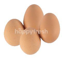 Telur Ayam Negri Curah