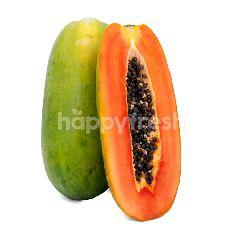 Organic California Baby Papaya