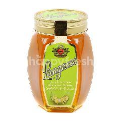 Langnese Linden Tree Blossom Honey