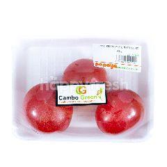 Cambo Green Momotaro Tomato