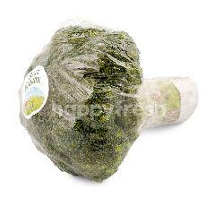 Ranch Organic 99 Brokoli Organik