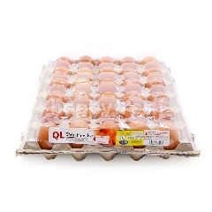 QL Fresh Eggs Grade C 30s