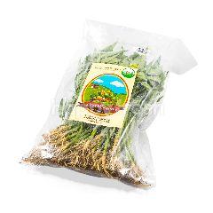 Living Organic Kangkung Baby
