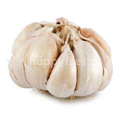 Bawang Putih Honan