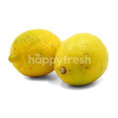 Lemon (L)