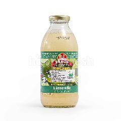 Bragg Minuman Cuka Apel Cider Organik Rasa Jeruk Nipis