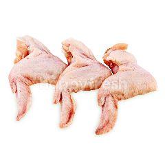 Sayap Ayam