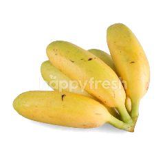 โฮม เฟรช มาร์ท กล้วยไข่ (5 ลูก)