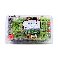 PAPRIKA FARM Mixed Salad Lettuce