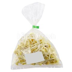 Large Bean Sprout (Tauge Besar)