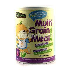 Multi Grain Meal