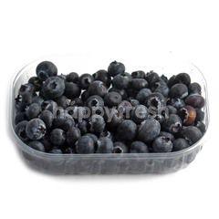 CAMPOSOL Camposol Fresh Blueberries