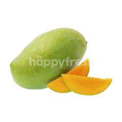 Mangga Harum Manis Premium