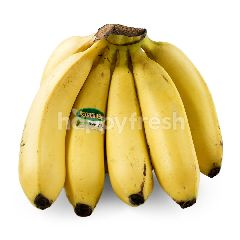 Dole Cavendish Banana