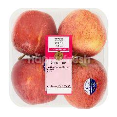 เทสโก้ แอปเปิ้ลกาล่า ไซส์ M (แพ็ค 4 ลูก)