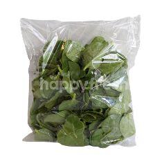 Malabar Leaves