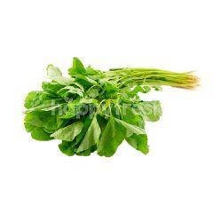 Round Spinach