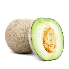 Sky Rock Melon