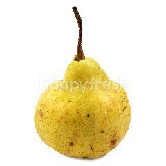 Pear Packam Afrika