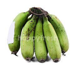 UM Banana