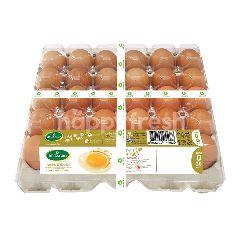 เบทาโกร ไข่ไก่อนามัย เบอร์ 0 (30 ฟอง)