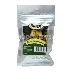 Burp! Air Dried Roast Mealworm 11.5g