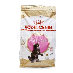 Royal Canin Maine Coon Kitten Food (Up to 15 Months Old)