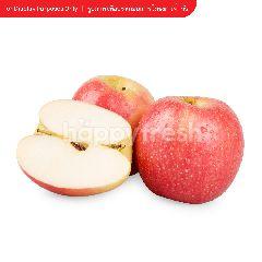 ซิตี้ เฟรช แอปเปิ้ล พิงค์เลดี้