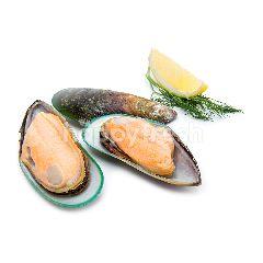 ธรรมชาติซีฟู้ด หอยแมลงภู่ นิวซีแลนด์ แช่แช็ง