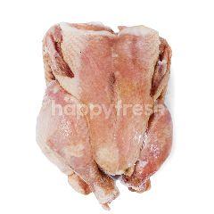 Daging Ayam Utuh