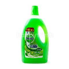 Dettol Multi Surface Cleaner Green Apple